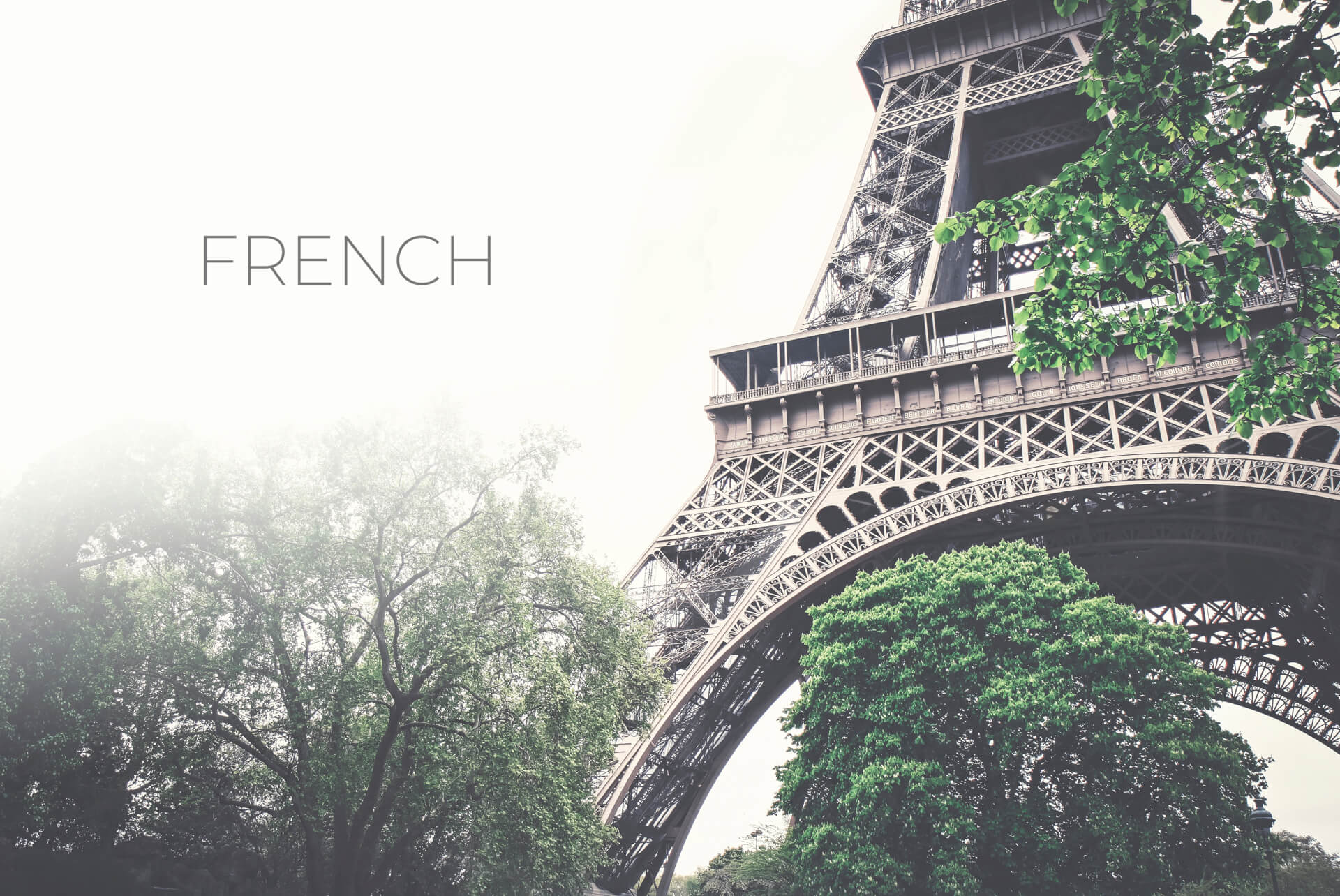 FRENCH PHOTO M